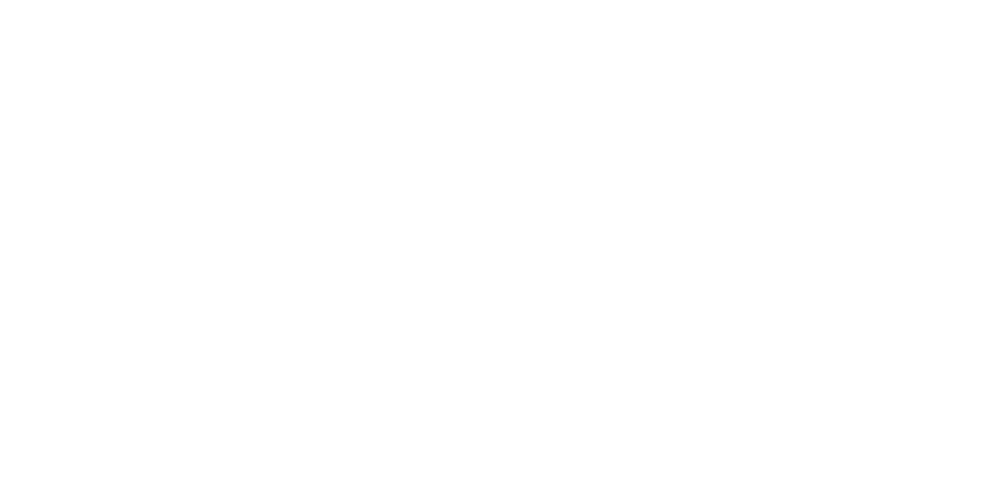 EXECUTIVE SEARCH, BOUTIQUE LEADER, PERSONALIZED APPROACH, COACHING